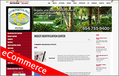 ecommerce website development 24
