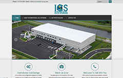 website design company ica