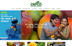 web design capco